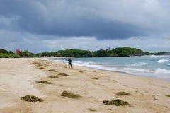 Nuca Dua,巴厘岛,印度尼西亚- 2017年12月21日:清洗海滩从海藻和垃圾在雨季期间 免版税图库摄影