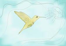 Nucić ptak Zdjęcie Stock