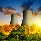 Nuclear power plant with sunflower field Royalty Free Stock Photography