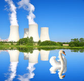 Nuclear power plant. Swan on the pond in the background Nuclear power plant Royalty Free Stock Images