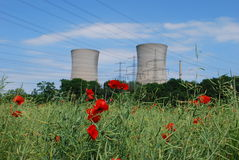 Nuclear power plant. Under blue heaven and corn poppys in front stock images