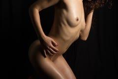 Nude θηλυκό bodyscape Στοκ Φωτογραφίες