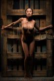 Nude με την παλέτα Στοκ Φωτογραφίες