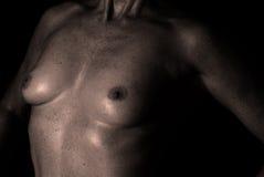 Nude σε γραπτό Στοκ φωτογραφίες με δικαίωμα ελεύθερης χρήσης