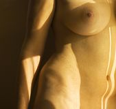 Nude female body. Stock Photos