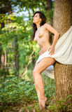 Nude female with white silk shawl Royalty Free Stock Photos