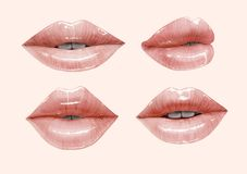 Nude lips set. Nude sensual juicy lips collection. Mouth set. Vector lipstick or lip gloss 3d realistic illustration. Gentle pink dusty rose colors Royalty Free Stock Images
