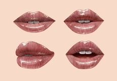 Nude lips set. Nude sensual juicy lips collection. Mouth set. Vector lipstick or lip gloss 3d realistic illustration. Gentle pink dusty rose colors Royalty Free Stock Image