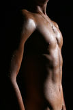 A nude male body Stock Images