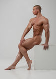 Nude male model Royalty Free Stock Photography