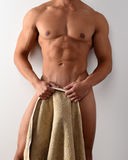 Nude male torso Royalty Free Stock Photo