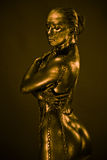 Nude woman like statue in liquid metal Royalty Free Stock Photo