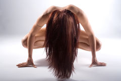 Nude woman with long hair Royalty Free Stock Photos
