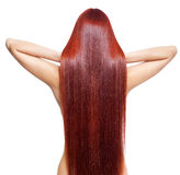 Nude woman with long red hair. Portrait of beautiful young nude woman with long red hair isolated on white background. View from back side stock images