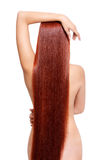 Nude woman with long red hair. Portrait of beautiful young nude woman with long red hair isolated on white background. View from back side Royalty Free Stock Photography