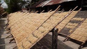 Nudelfabrik i Bantul, Yogyakarta, Indonesien arkivfilmer