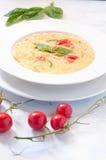 Nudelsoppa med morötter, potatisar och zucchinin Italien royaltyfria foton