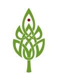 Nudo céltico del símbolo Foto de archivo libre de regalías