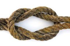 nudo de filón Foto de archivo libre de regalías