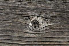 Nudo de madera Fotos de archivo