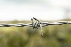 Nudo del alambre de púas Fotos de archivo libres de regalías