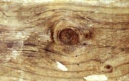 Nudo en madera fotografía de archivo