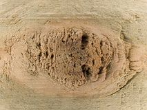 Nudo en madera imagen de archivo