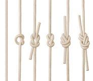 Nudos de la cuerda libre illustration