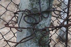 Nudos del hierro en una columna Fotografía de archivo