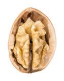 Nueces agrietadas aisladas en blanco Fotos de archivo libres de regalías