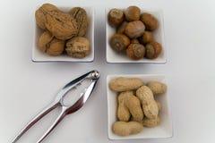 Nueces, avellanas y cacahuetes en tres tazones de fuente Fotografía de archivo libre de regalías