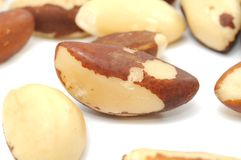 Nueces de Brasil imagen de archivo