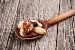 Nueces de Brasil en una cuchara en fondo de madera Imagen de archivo