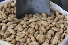 Nueces de la almendra Foto de archivo libre de regalías