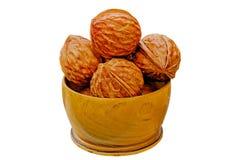 Nueces de la madera del enebro en un florero Foto de archivo