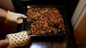 Nueces de la mezcla Las manos ponen nueces Tuercas clasificadas El hombre pone nueces en horno almacen de video