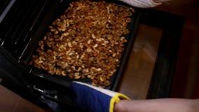 Nueces de la mezcla Las manos ponen nueces Tuercas clasificadas El hombre pone nueces en horno metrajes