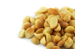 Nueces de macadamia imágenes de archivo libres de regalías