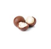 Nueces de macadamia fotografía de archivo