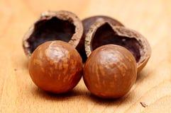 Nueces de macadamia Imagen de archivo