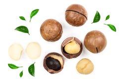Nueces de macadamia descascadas y descascaradas con las hojas aisladas en el fondo blanco Visión superior Modelo plano de la ende fotos de archivo libres de regalías