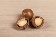 Nueces de macadamia - integrifolia de macadamia o nueces australianas imagenes de archivo