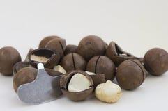 Nueces de macadamia y abrelatas de la nuez Fotos de archivo