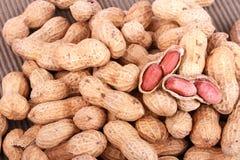 Nueces de mono, cacahuetes o cacahuetes en las cáscaras, aisladas en un fondo blanco Imágenes de archivo libres de regalías