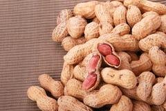 Nueces de mono, cacahuetes o cacahuetes en las cáscaras, aisladas en un fondo blanco Imagen de archivo libre de regalías