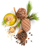 Nueces de pino del cedro y aceite, visión desde arriba Foto de archivo libre de regalías