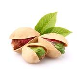 Nueces de pistacho con las hojas Foto de archivo libre de regalías