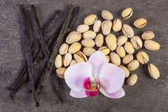 Nueces de pistacho, orquídea floreciente y palillos fragantes de la vainilla, ingredientes cosméticos imagen de archivo