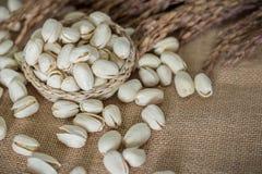Nueces de pistachos saladas imagenes de archivo