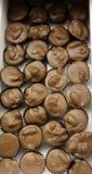 Nueces del chocolate Imagen de archivo libre de regalías